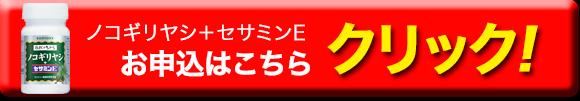 nokogiriyasi-botan