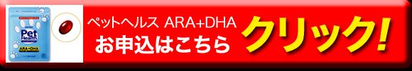 pet-dha